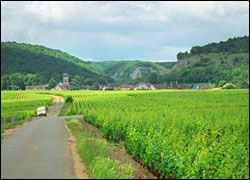French-countryside-2