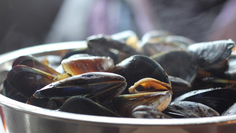 Mussels-chips