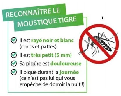 Tiger-moustique-prevent-tips